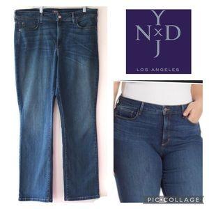 16W|NYDY Billie|mini bootcut jeans